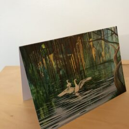 Swans & Willows (Greeting Cards x3)